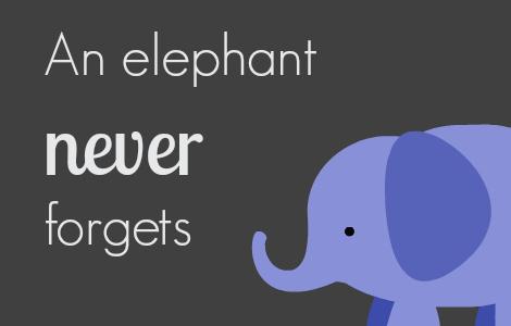 elephant pic blog